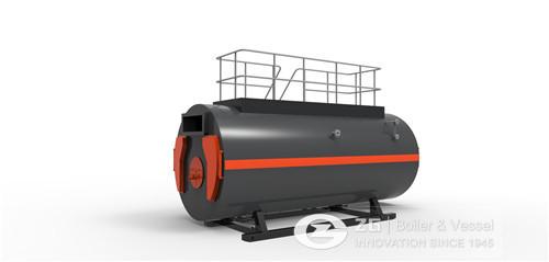 wns boiler10